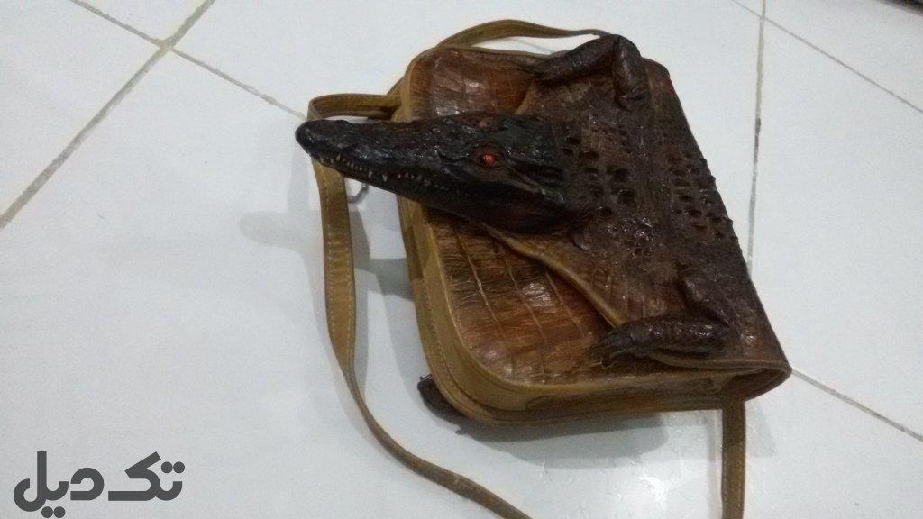 کیف پوست تمساح اصل سودان