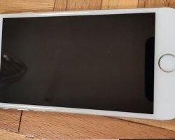 آیفون 6 در فروشگاه اینترنتی