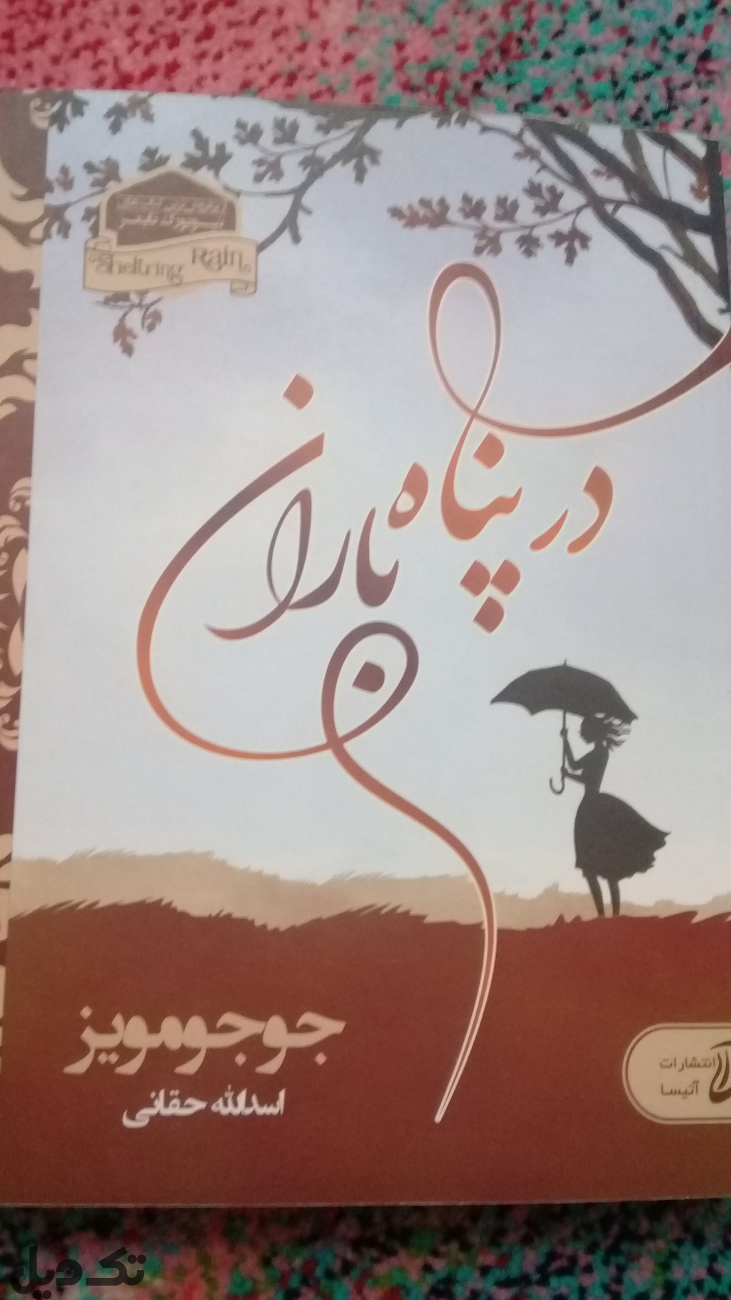 رمان در پناه باران